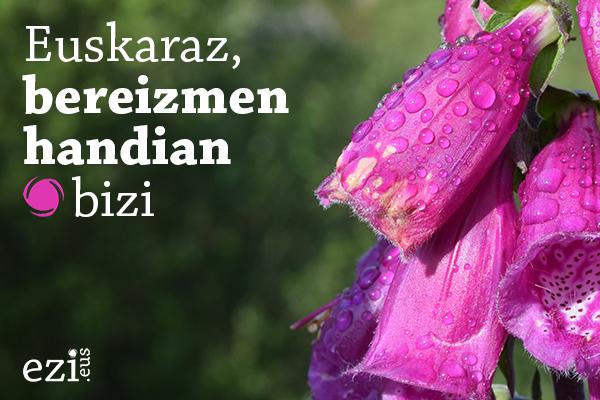 euskaraz__bereizmen_handian_bizi
